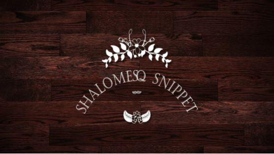 shalomesq snippet1
